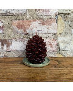 Pine Cone - Medium